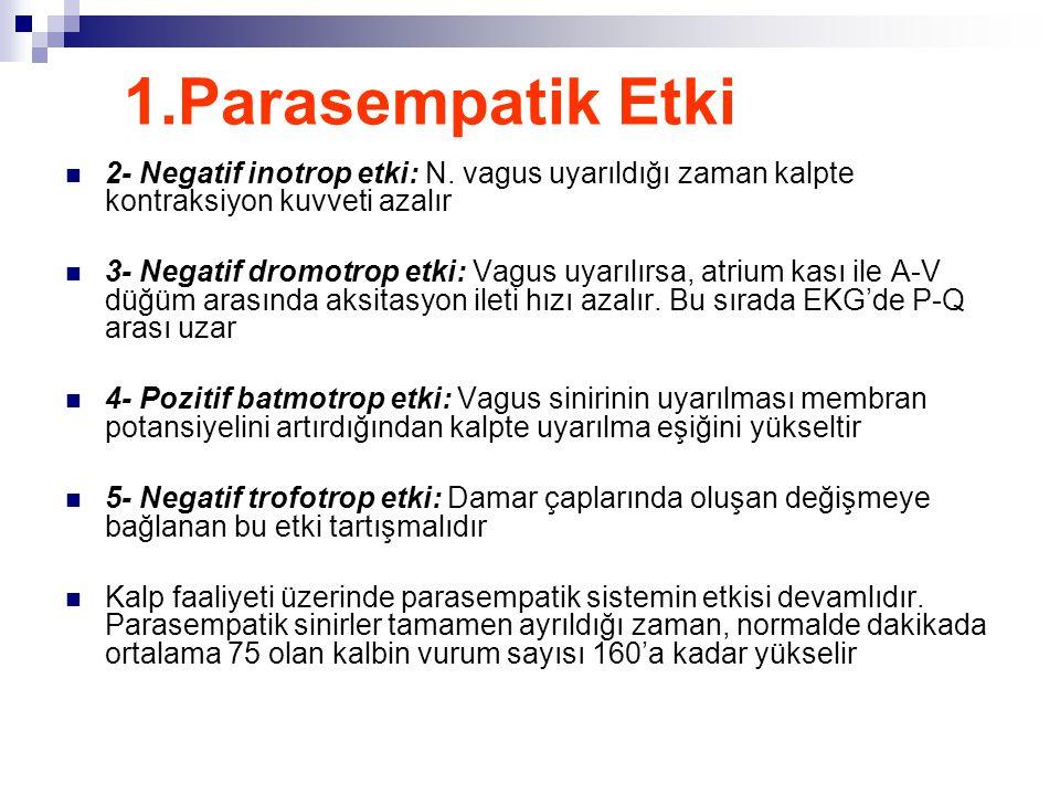 1.Parasempatik Etki 2- Negatif inotrop etki: N. vagus uyarıldığı zaman kalpte kontraksiyon kuvveti azalır.