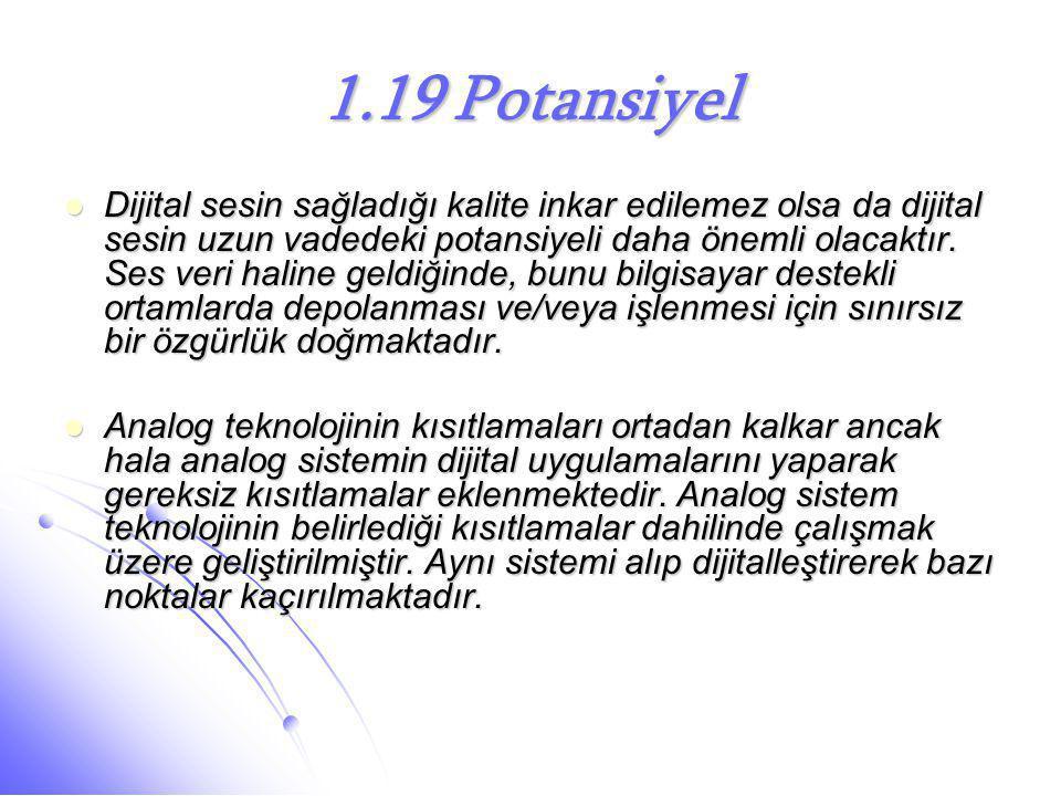 1.19 Potansiyel