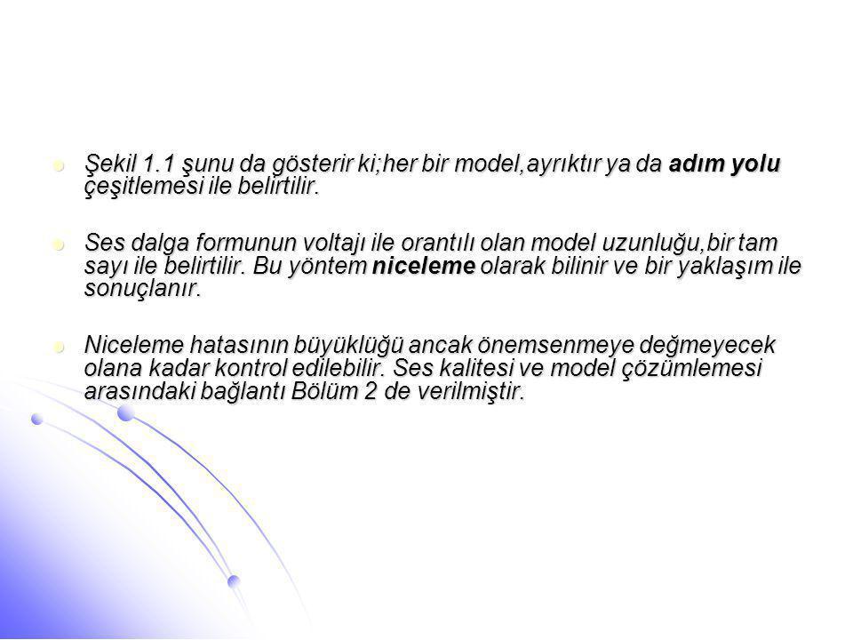 Şekil 1.1 şunu da gösterir ki;her bir model,ayrıktır ya da adım yolu çeşitlemesi ile belirtilir.