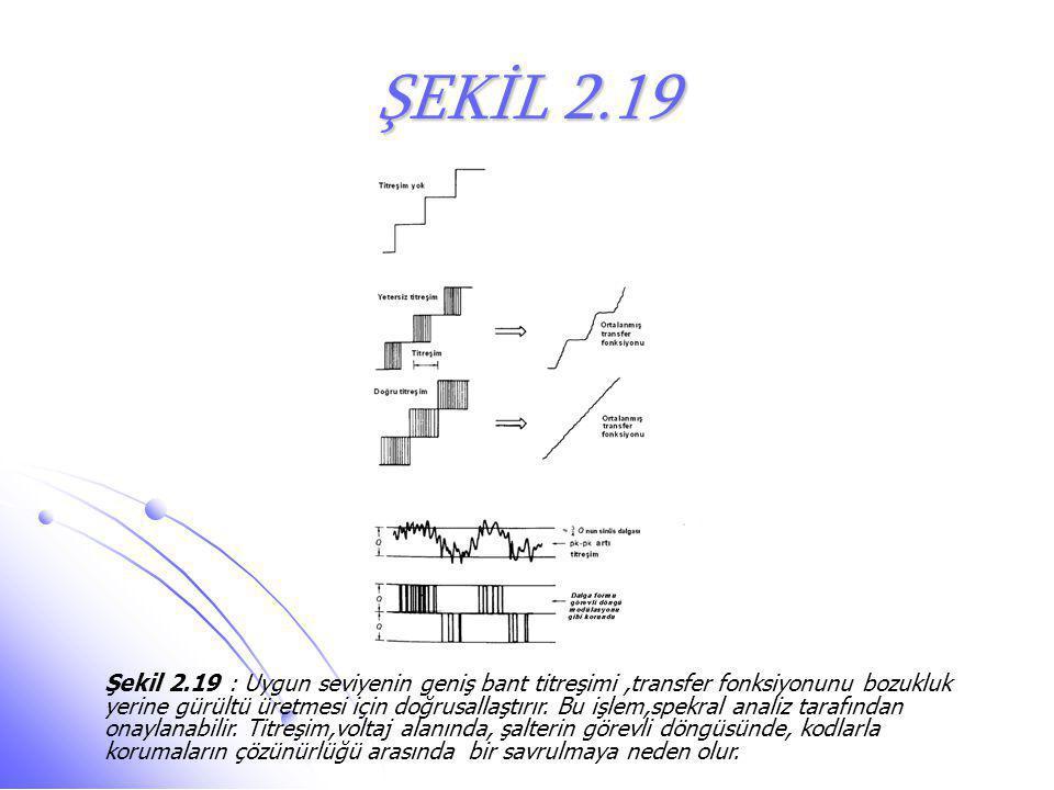 ŞEKİL 2.19