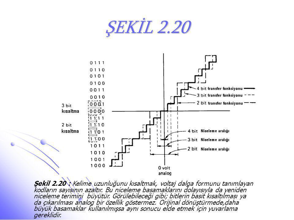 ŞEKİL 2.20