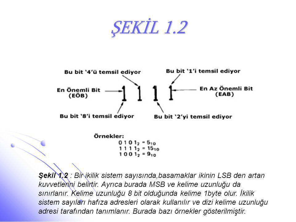 ŞEKİL 1.2