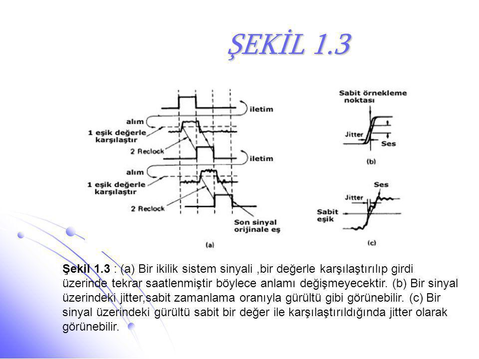 ŞEKİL 1.3