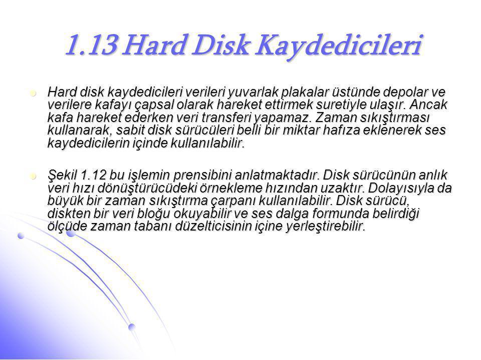 1.13 Hard Disk Kaydedicileri