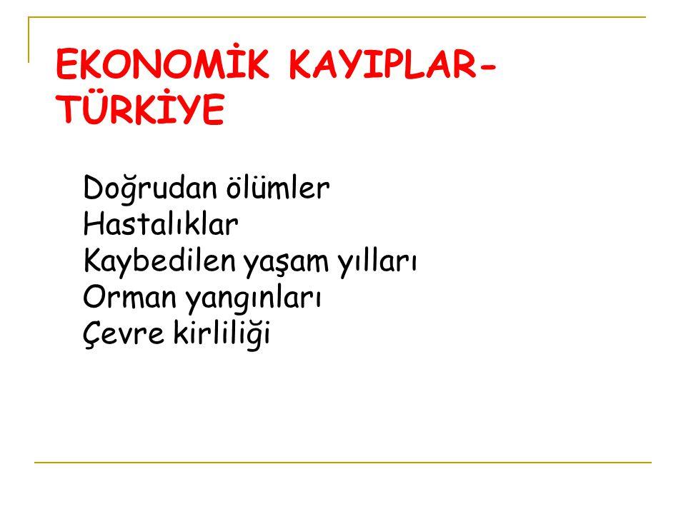 EKONOMİK KAYIPLAR-TÜRKİYE
