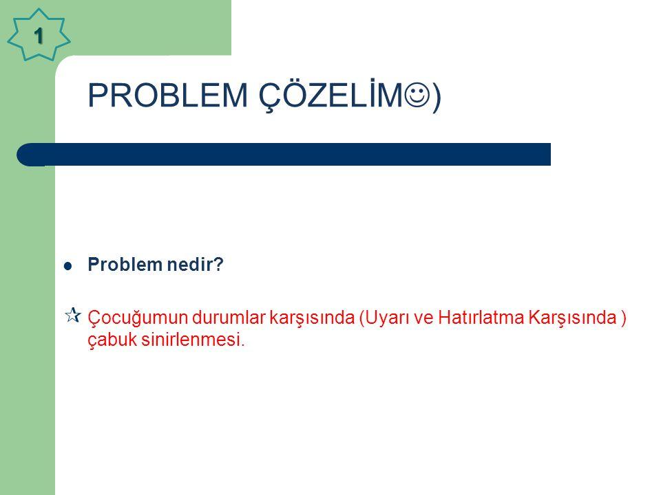 PROBLEM ÇÖZELİM) 1 Problem nedir