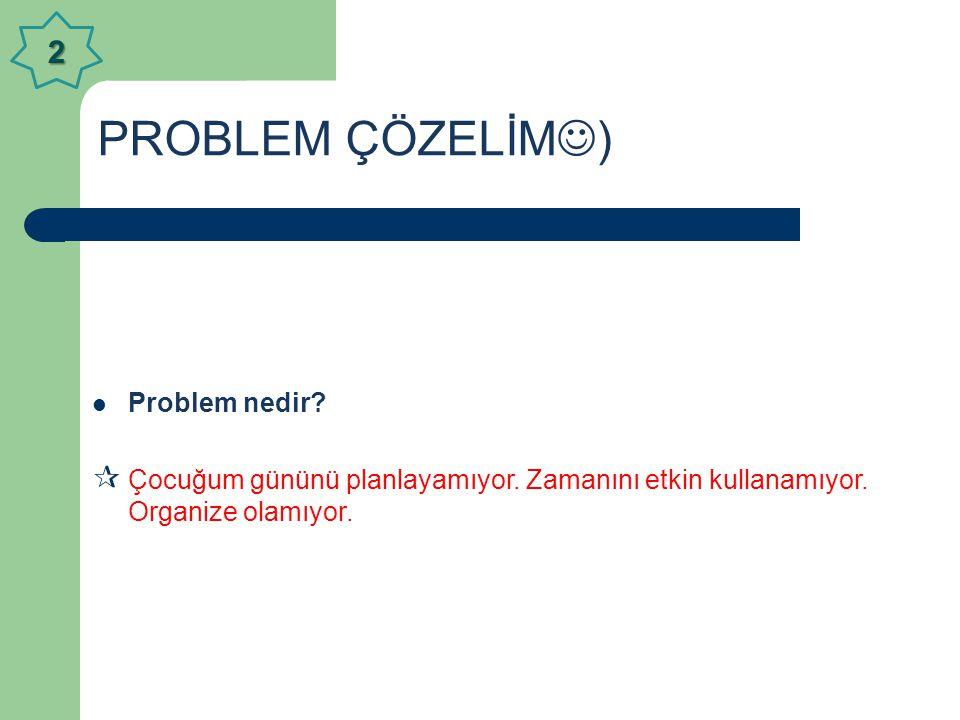 PROBLEM ÇÖZELİM) 2 Problem nedir