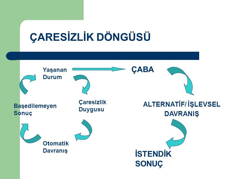 ÇARESİZLİK DÖNGÜSÜ ÇABA İSTENDİK SONUÇ ALTERNATİF/ İŞLEVSEL DAVRANIŞ