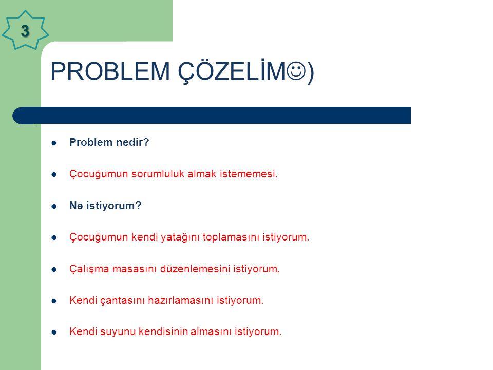 PROBLEM ÇÖZELİM) 3 Problem nedir
