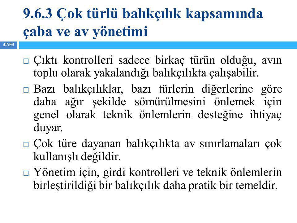 9.6.3 Çok türlü balıkçılık kapsamında çaba ve av yönetimi