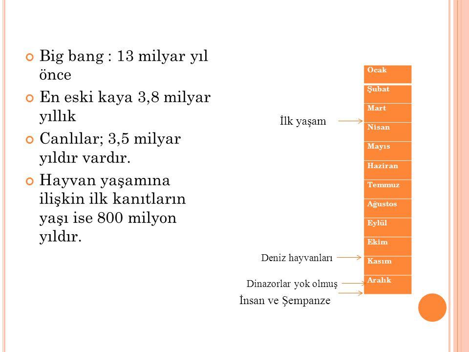 Big bang : 13 milyar yıl önce En eski kaya 3,8 milyar yıllık