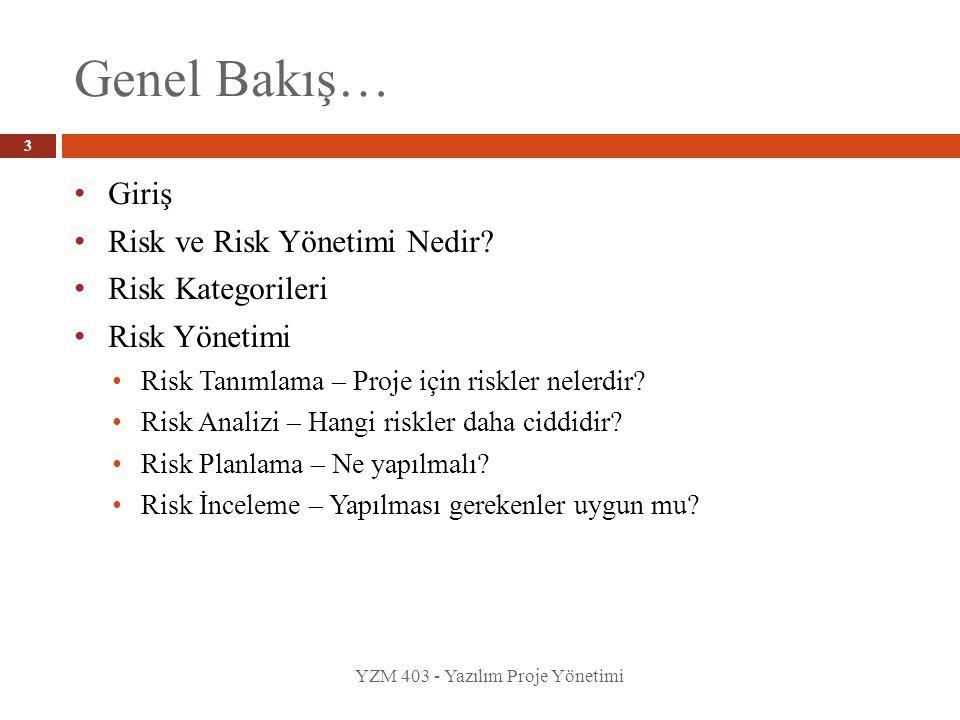 Genel Bakış… Giriş Risk ve Risk Yönetimi Nedir Risk Kategorileri