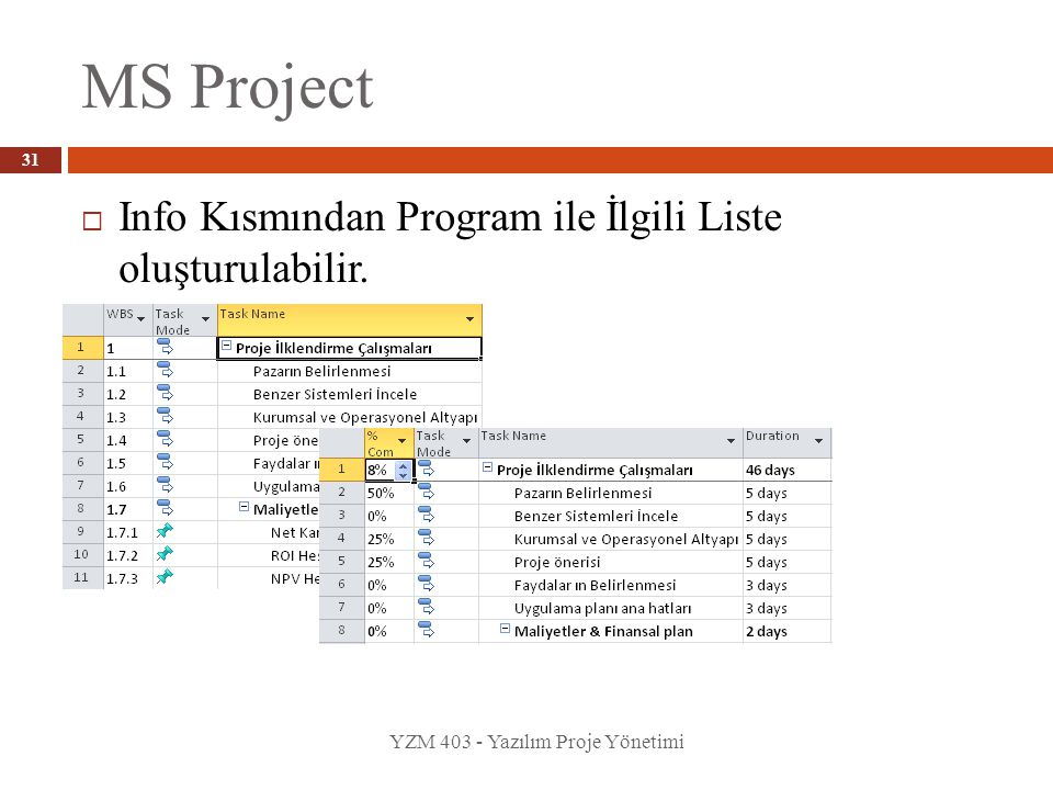 MS Project Info Kısmından Program ile İlgili Liste oluşturulabilir.