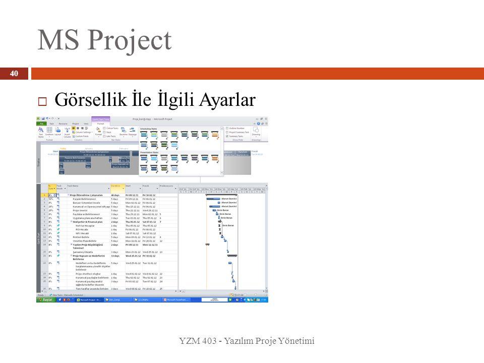 MS Project Görsellik İle İlgili Ayarlar