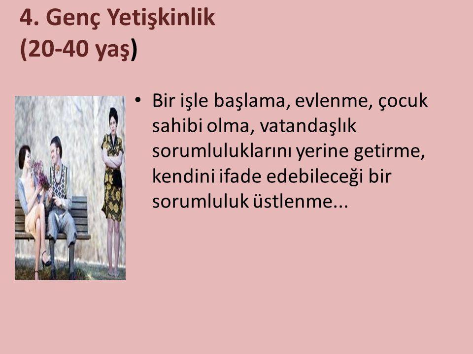 4. Genç Yetişkinlik (20-40 yaş)
