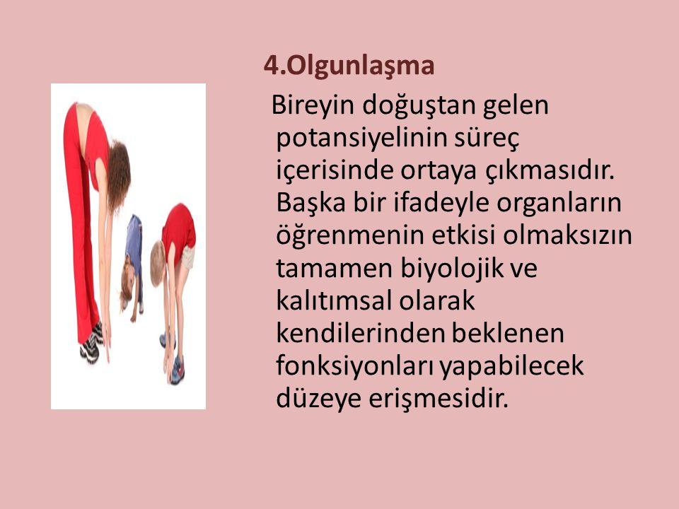 4.Olgunlaşma