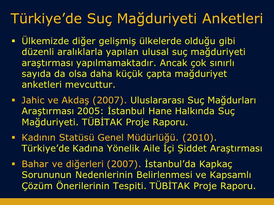 Türkiye'de Suç Mağduriyeti Anketleri
