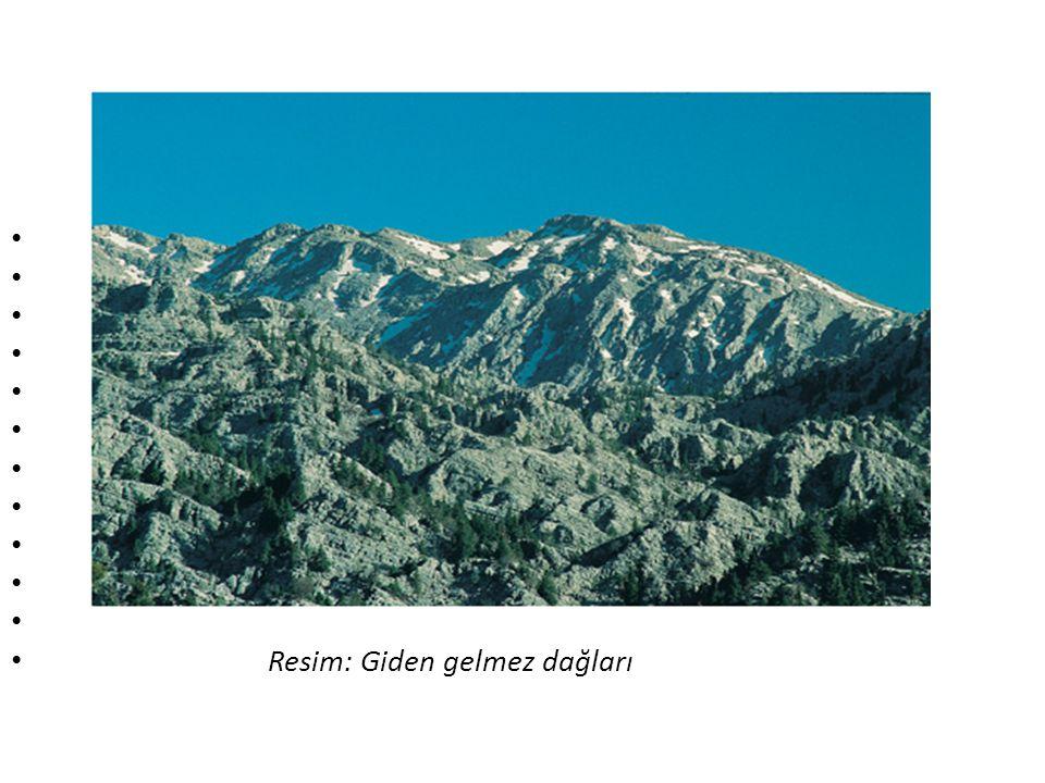 Resim: Giden gelmez dağları