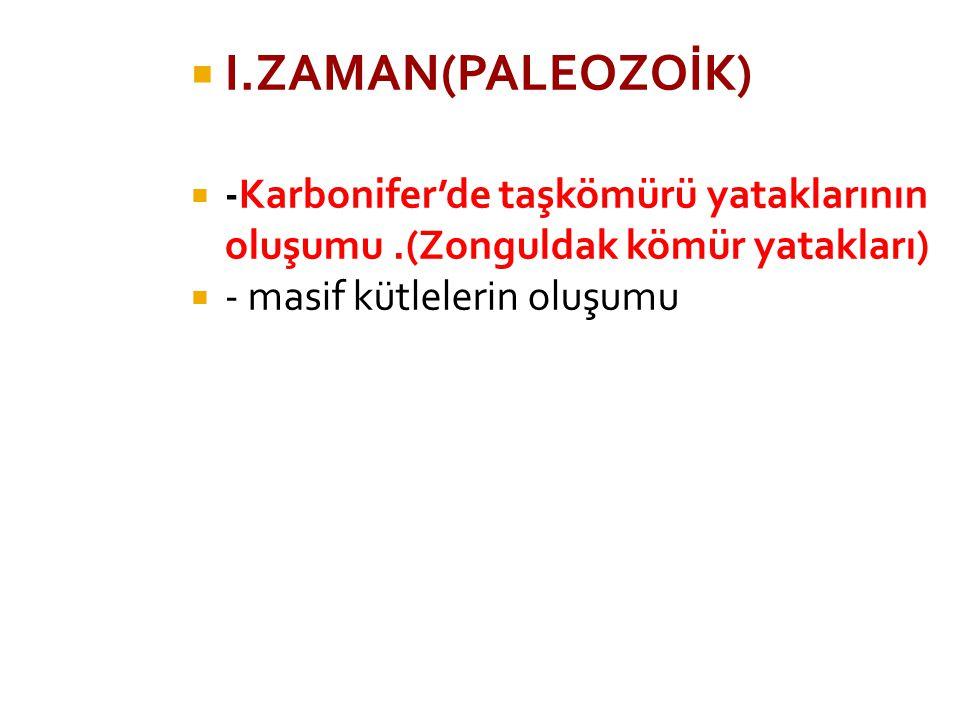 I.ZAMAN(PALEOZOİK) -Karbonifer'de taşkömürü yataklarının oluşumu .(Zonguldak kömür yatakları) - masif kütlelerin oluşumu.