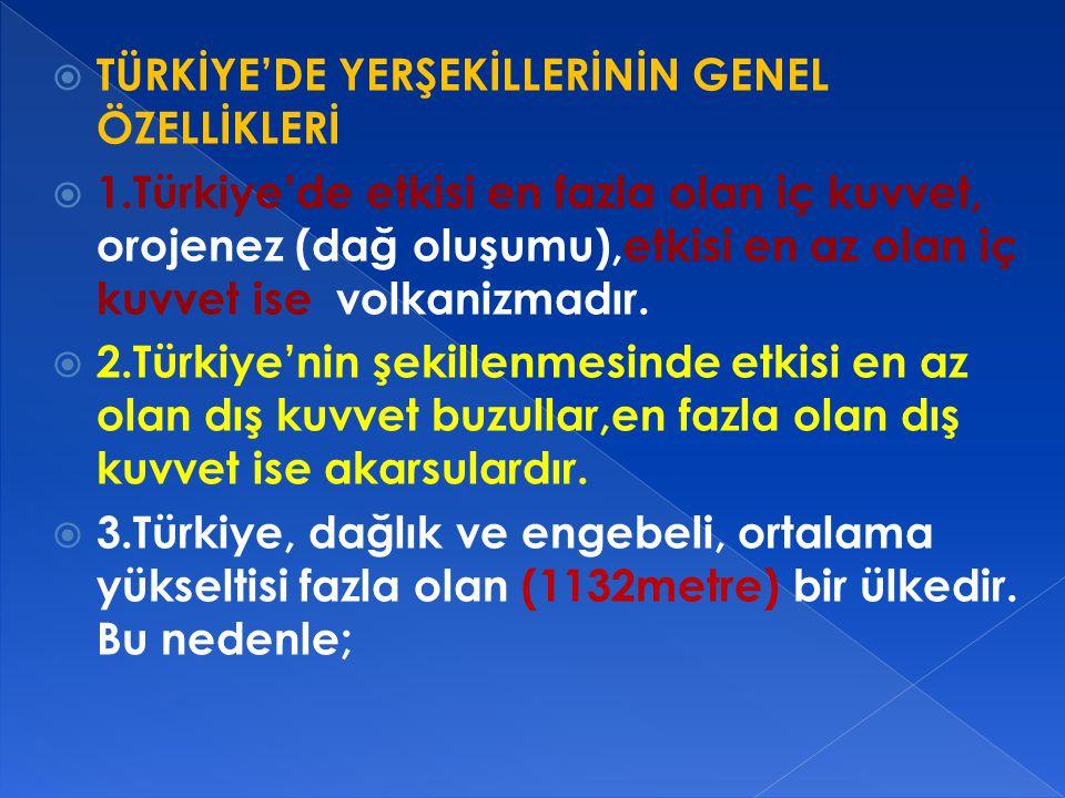TÜRKİYE'DE YERŞEKİLLERİNİN GENEL ÖZELLİKLERİ