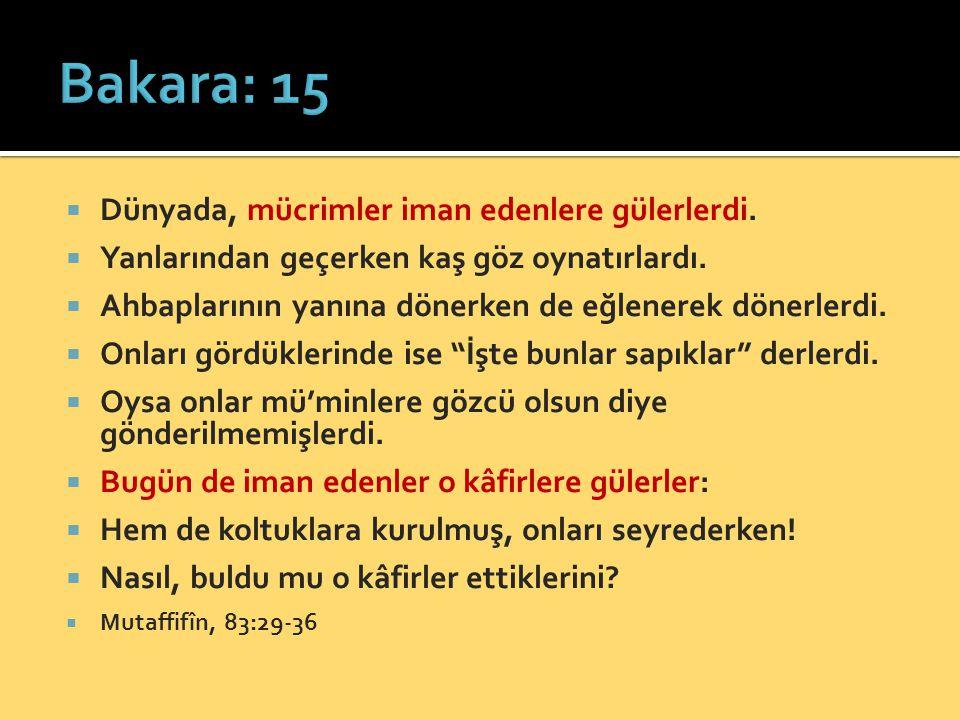 Bakara: 15 Dünyada, mücrimler iman edenlere gülerlerdi.