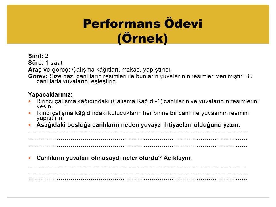 Performans Ödevi (Örnek)