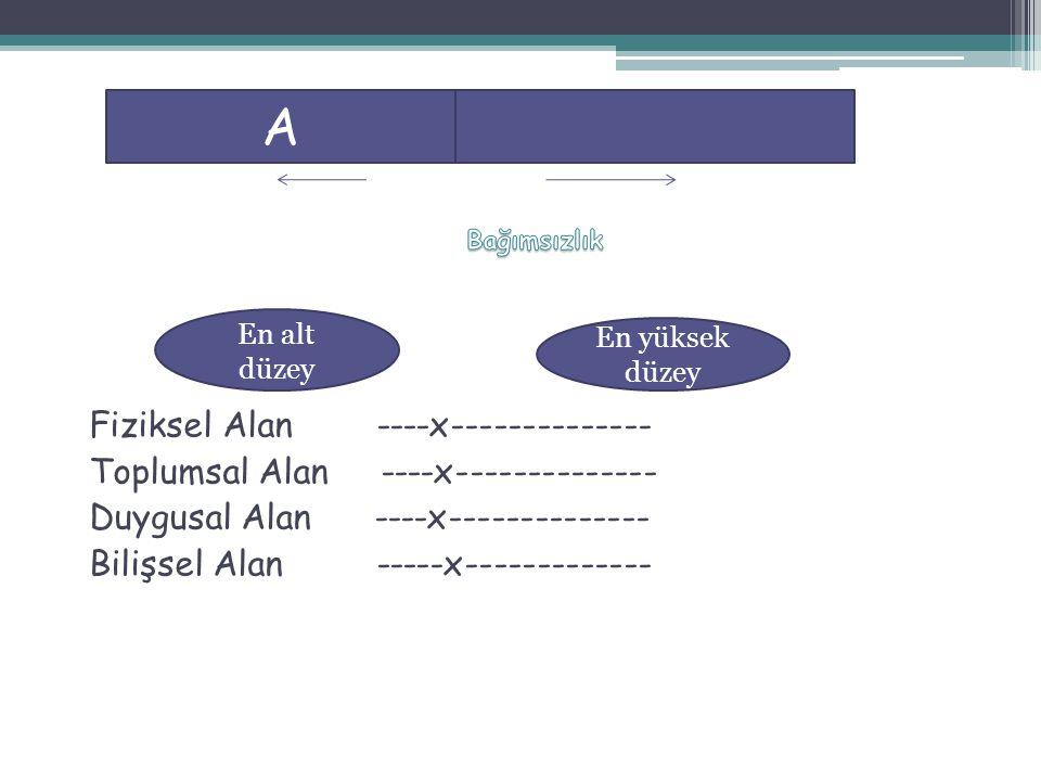 A Fiziksel Alan ----x-------------- Toplumsal Alan ----x--------------