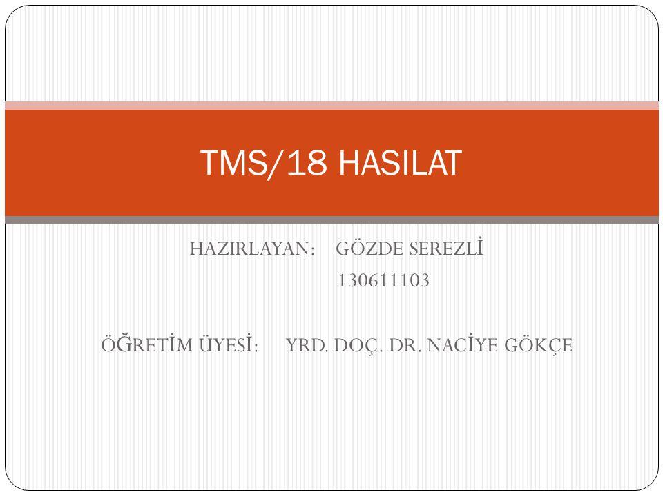 TMS/18 HASILAT HAZIRLAYAN: GÖZDE SEREZLİ 130611103