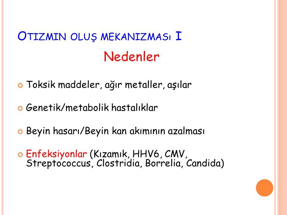 Otizmin oluş mekanizması I