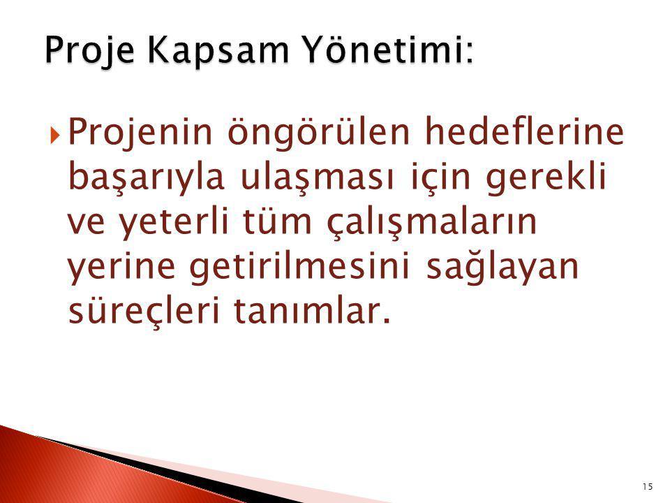 Proje Kapsam Yönetimi: