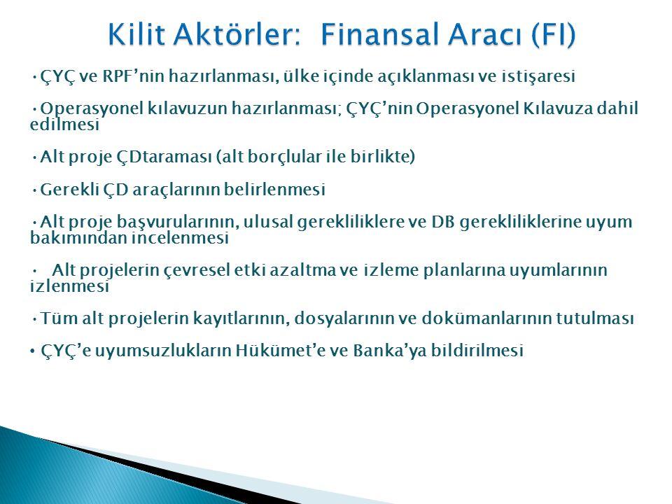 Kilit Aktörler: Finansal Aracı (FI)