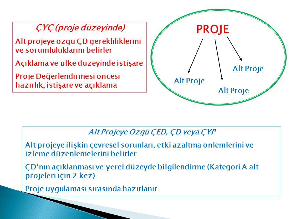 Alt Projeye Özgü ÇED, ÇD veya ÇYP