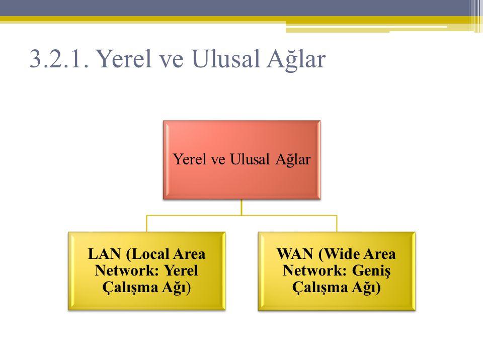 WAN (Wide Area Network: Geniş Çalışma Ağı)