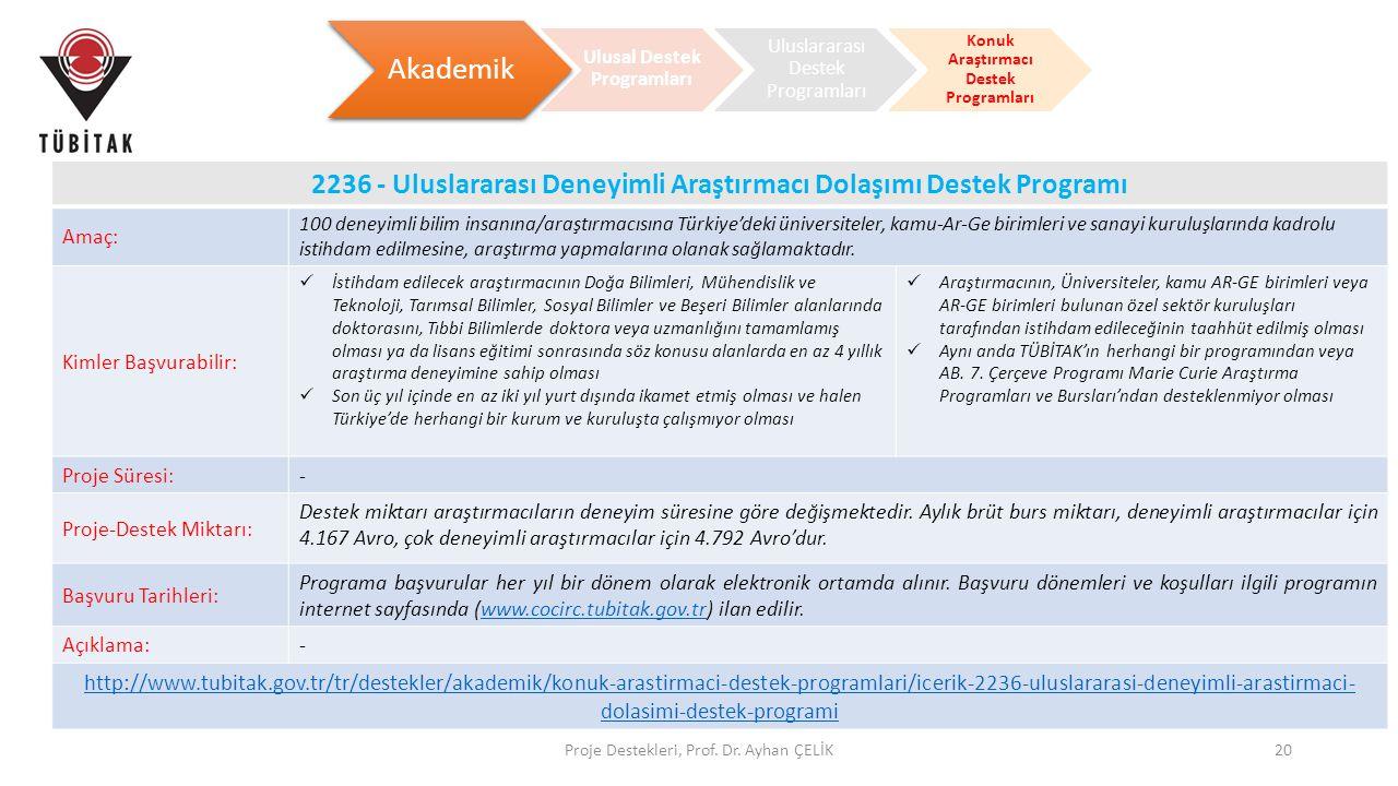 Ulusal Destek Programları Konuk Araştırmacı Destek Programları