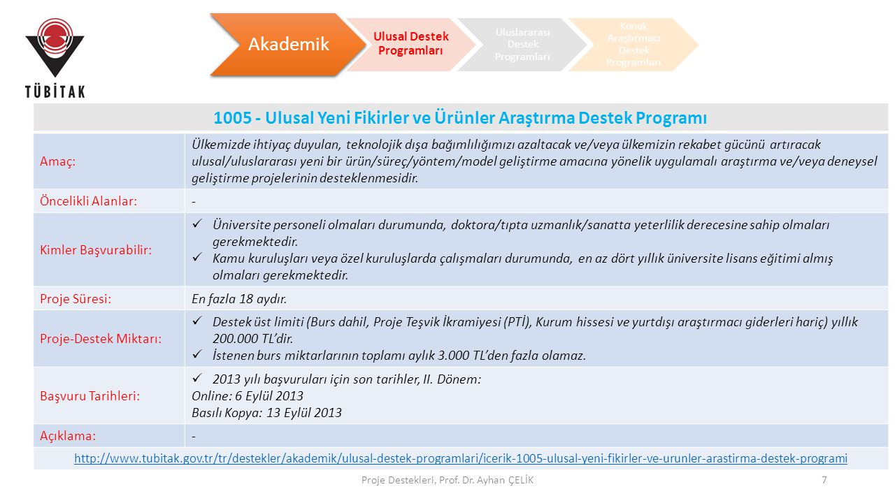 Ulusal Destek Programları