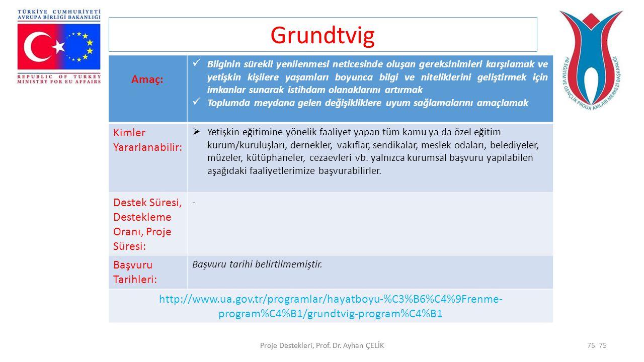 Grundtvig Amaç: Kimler Yararlanabilir:
