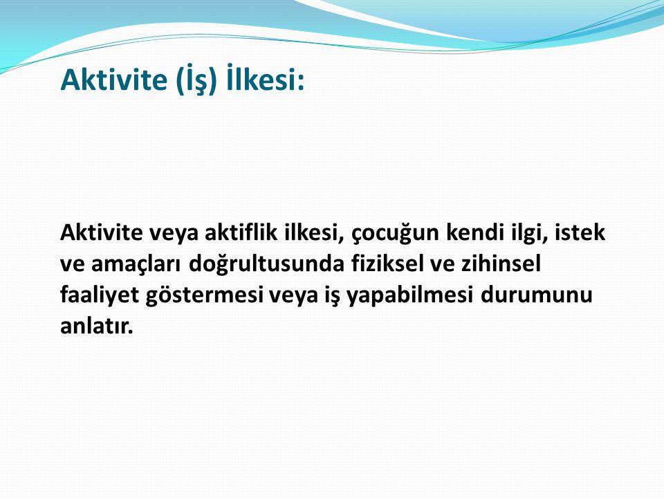 Aktivite (İş) İlkesi: