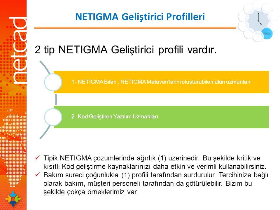 NETIGMA Geliştirici Profilleri