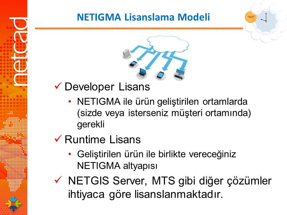 NETIGMA Lisanslama Modeli