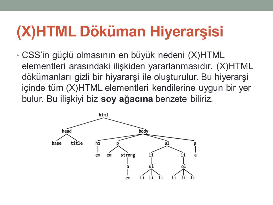 (X)HTML Döküman Hiyerarşisi