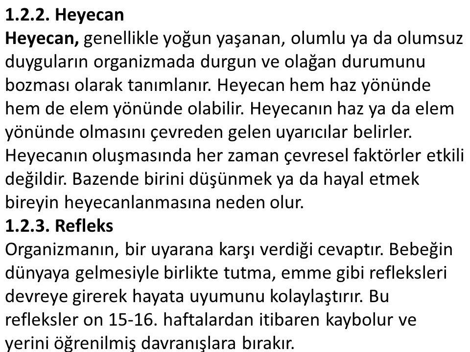 1.2.2. Heyecan
