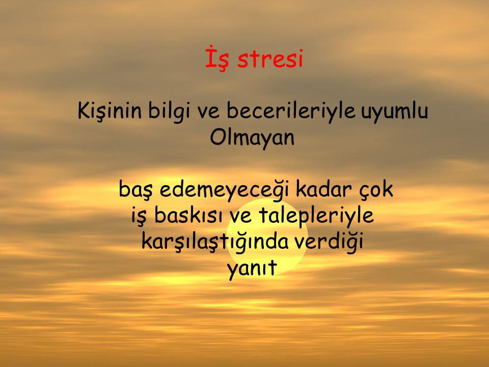VV İş stresi Kişinin bilgi ve becerileriyle uyumlu Olmayan