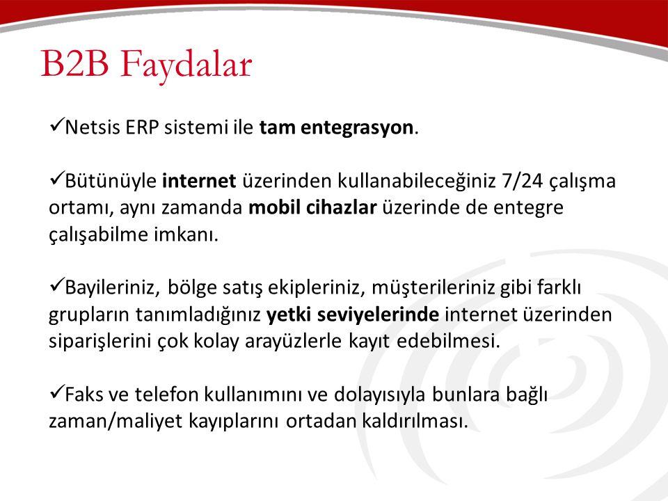 B2B Faydalar Netsis ERP sistemi ile tam entegrasyon.