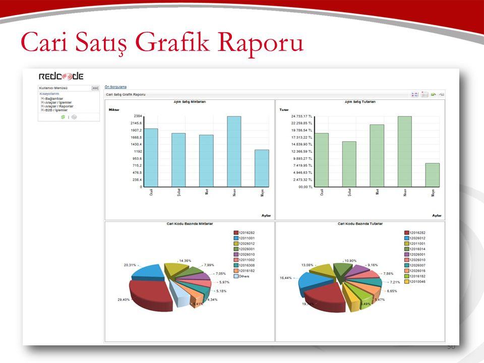 Cari Satış Grafik Raporu