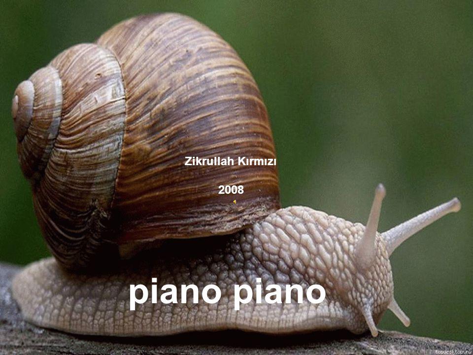 Zikrullah Kırmızı 2008 piano piano