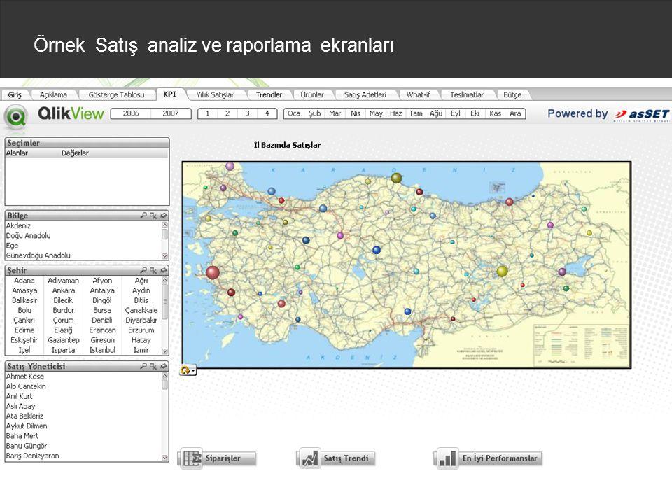 Örnek Satış analiz ve raporlama ekranları