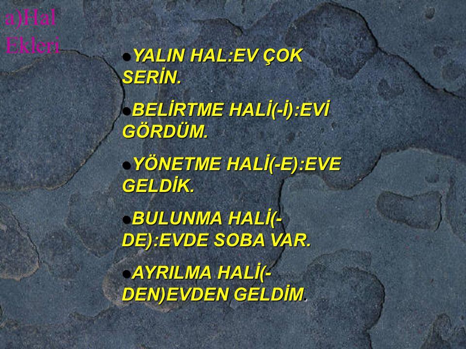 a)Hal Ekleri YALIN HAL:EV ÇOK SERİN. BELİRTME HALİ(-İ):EVİ GÖRDÜM.
