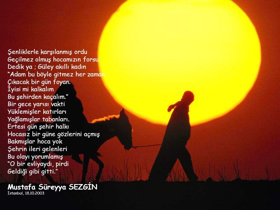 Mustafa Süreyya SEZGİN