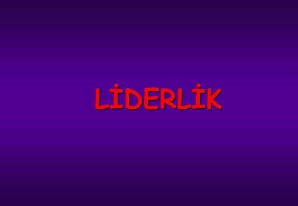 LİDERLİK İstanbul Denizcilik ve Su Ürünleri Meslek Lisesi