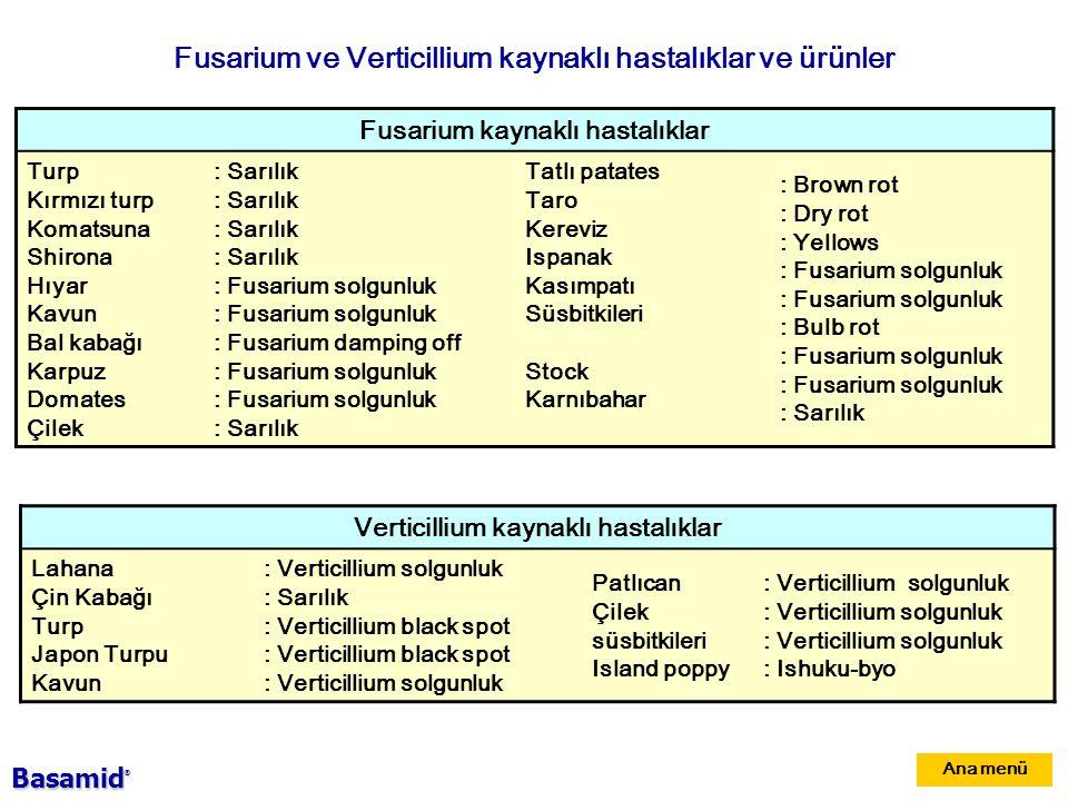 Fusarium ve Verticillium kaynaklı hastalıklar ve ürünler